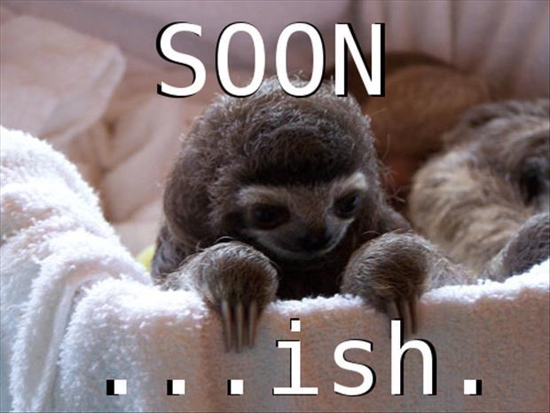 sloth-soon-meme.jpg
